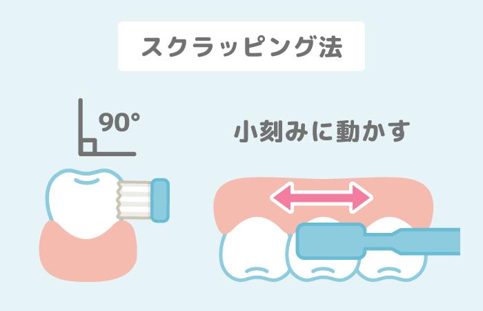 ブラッシング方法(2)