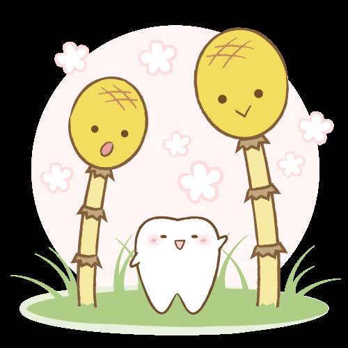 そうだ!院長に聞いてみよう!(15)歯が欠けたらどうするの?